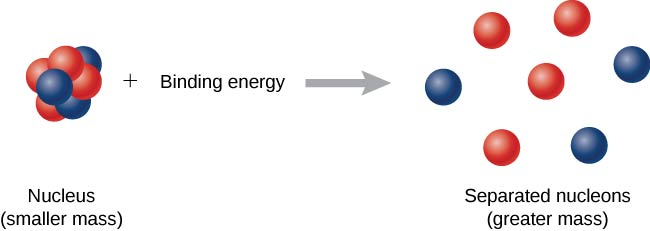The figure shows a reaction. The LHS shows a nucleus plus binding energy. This nucleus is a cluster of closely packed protons and neutrons and is labeled, smaller mass. On the RHS is a nucleus with loosely packed protons and neutrons, labeled, separated nucleons, greater mass.