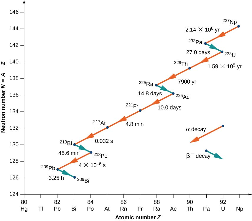A graph of neutron number N = A – Z versus atomic number Z is shown. Alpha decay is shown by red arrows pointing downward left, thus showing decrease in both N and Z. Beta decay is shown by blue arrows pointing downward right, indicating a decrease in N and increase in Z. The decay is shown as follows: Alpha decay from 237 Np to 233 Pa in 2.14 into 10 to the power 6 years. Beta decay from 233 Pa to 233 U in 27 days. Alpha decay from 233 U to 229 Th in 1.59 into 10 to the power 5 years and from 229 Th to 225 Ra in 7900 years. Beta decay from 225 Ra to 225 Ac in 14.8 days. Alpha decay from 225 Ac to 221 Fr in 10 days, from 221 Fr to 217 At in 4.8 minutes and from 217 At to 213 Bi in 0.032 seconds. Beta decay from 213 Bi to 213 Po in 45.6 minutes. Alpha decay from 213 Po to 209 Pb in 4 into 10 to the power minus 6 seconds. Beta decay from 209 Pb to 209 Bi in 3.25 hours.