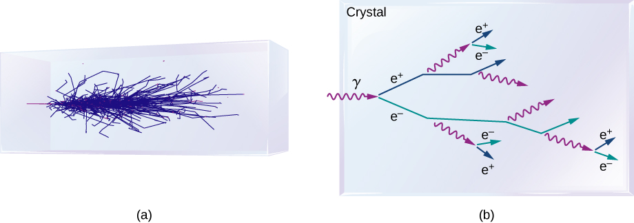 Figure a shows pattern of blue lines within a rectangular crystal. Figure b shows a crystal. A gamma ray enters it and splits into two rays, e plus and e minus. The e plus ray further splits into a gamma ray and an e plus ray. The e minus ray splits into a gamma ray and an e minus ray. The splitting continues in the same manner.