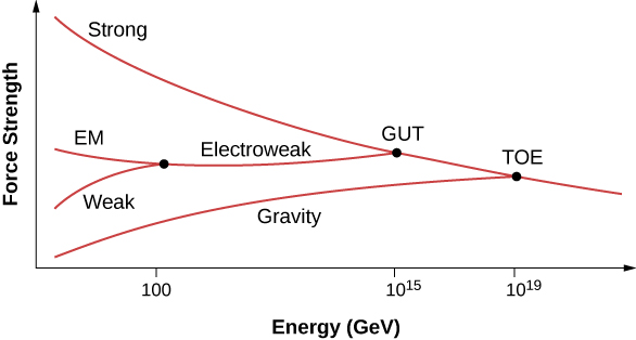 Graph of Force Strength versus Energy in GeV. A curve labeled strong slopes down and right. A point on the curve with an x value of 10 to the power 19 is labeled TOE. A curve labeled gravity branches out from here, going down and left. A point on the strong curve, with an x value of 10 to the power 15 is labeled GUT. A curve going left branches out from here. It is labeled Electroweak. This branches into two at a point with an x value of 100. The branch going left is labeled EM and the one going down and left is labeled weak.