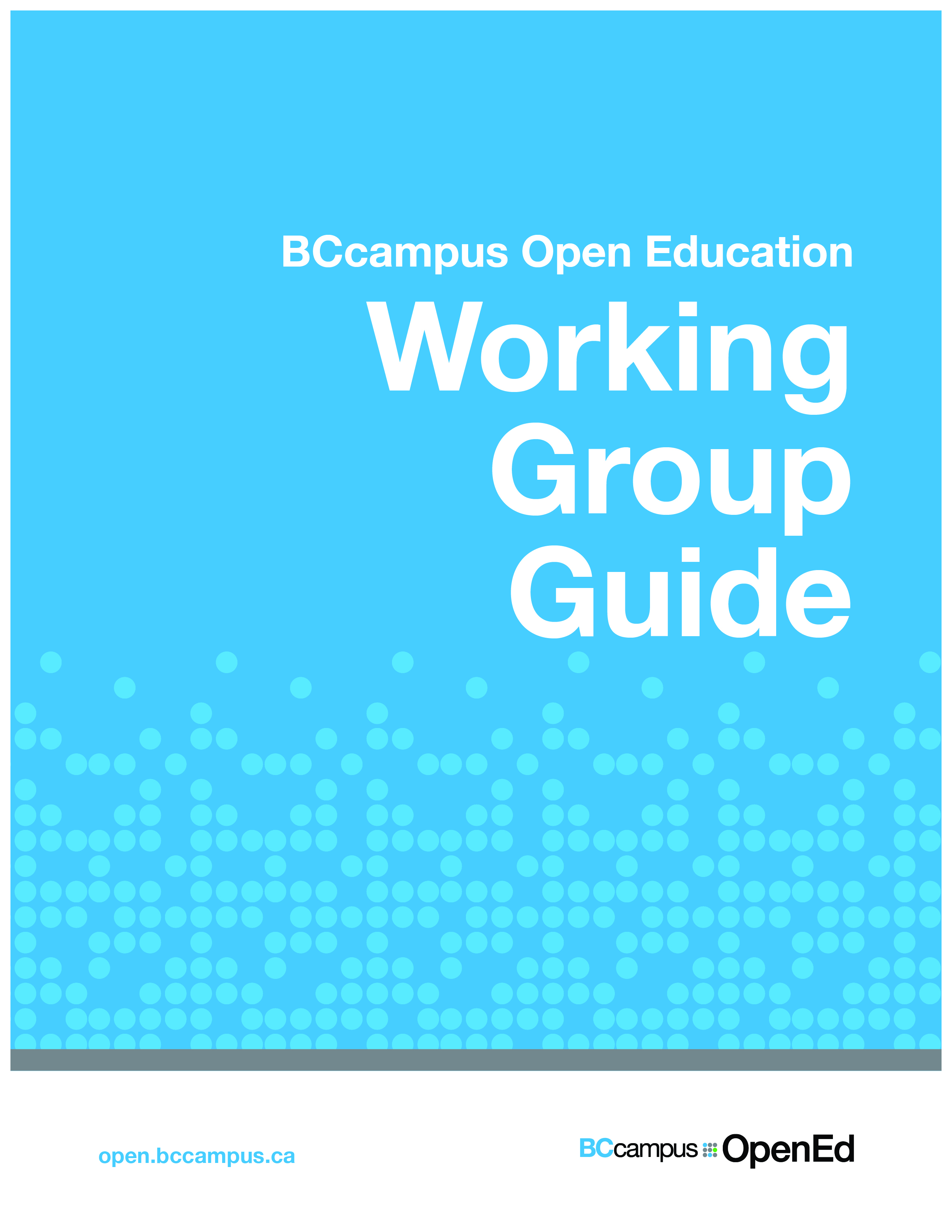 Cover image for Working Group Guide