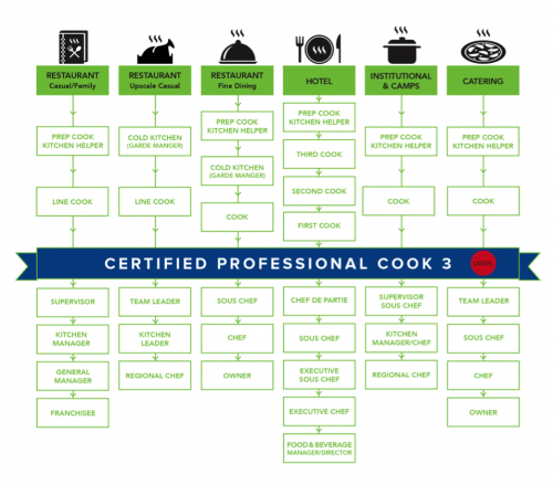 Career options available to a certified Professional Cook 3. Long description available.