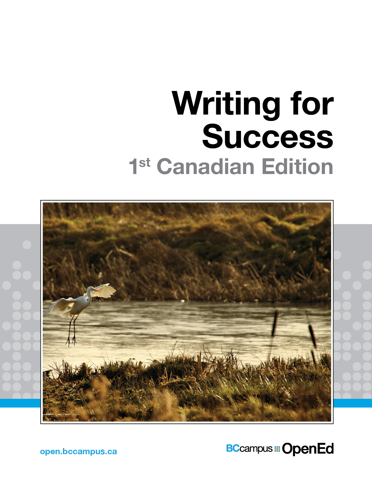 Cover image for Writing for Success - 1st Canadian Edition